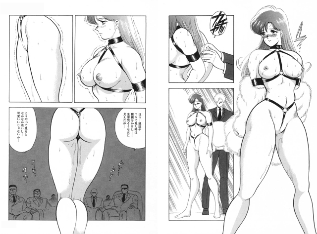 マテリアルレディ2 ~Slave Site~